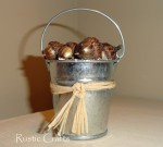 bucket of acorns ornament_edited-1