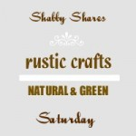 shabby shares logo