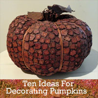 Craft Ideas Decorating Small Pumpkins on Ten Ideas For Decorating Pumpkins   Rustic Crafts   Chic Decor