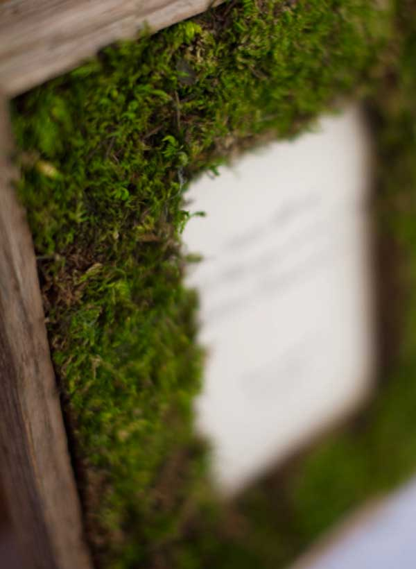 creative picture frames - moss frame