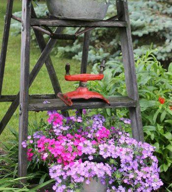 rustic garden ideas - vintage ladder plant holder