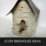 diy-birdhouse