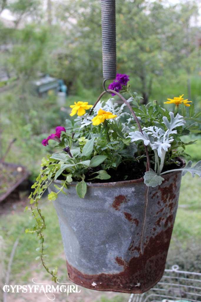 rustic outdoor decor ideas - rusty bucket hanging planter