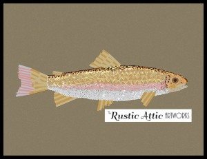 rainbow trout print