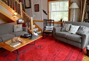 cabin-living-room-1