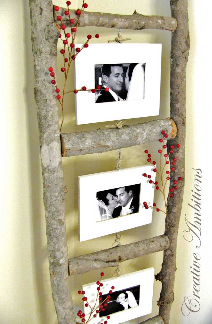 branch ladder photo display