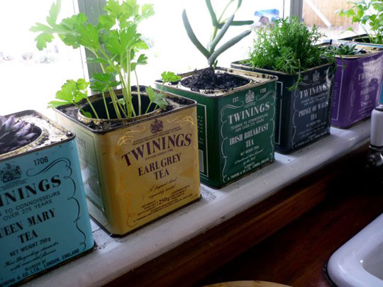 vintage tea canister planters