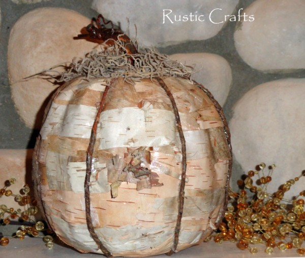 decorating pumpkins with birch bark
