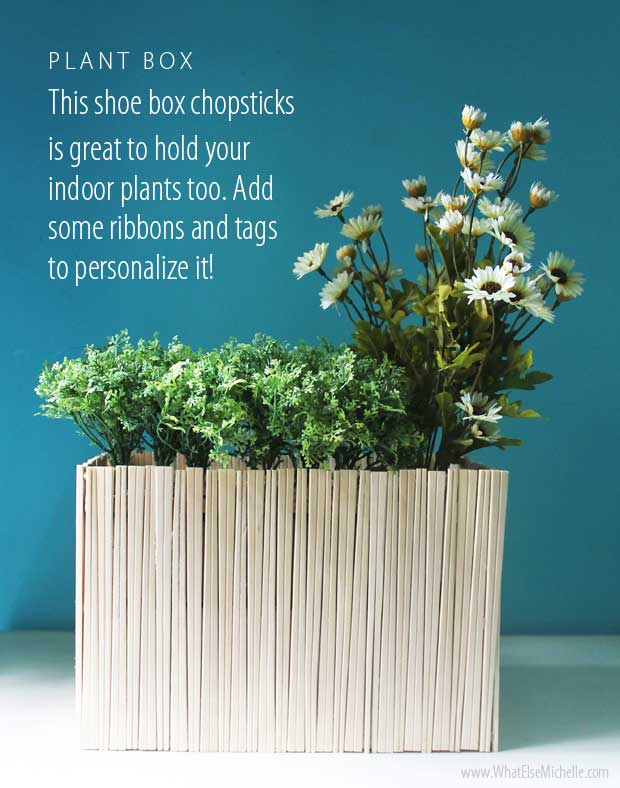 shoe box planter