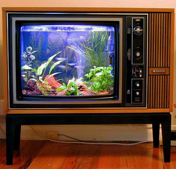 tv into fish tank
