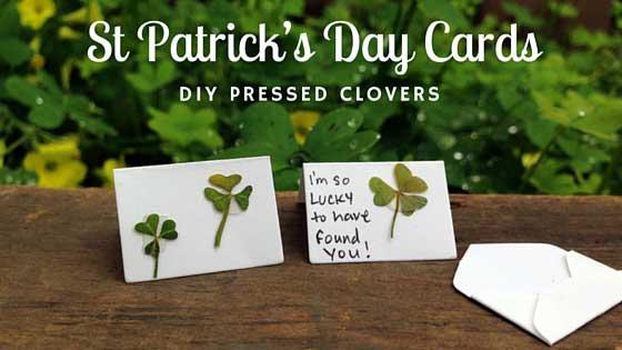 St. Patricks day crafts - pressed clover cards