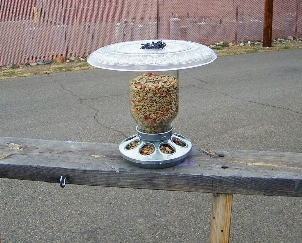 outdoor mason jar ideas - mason jar bird feeder