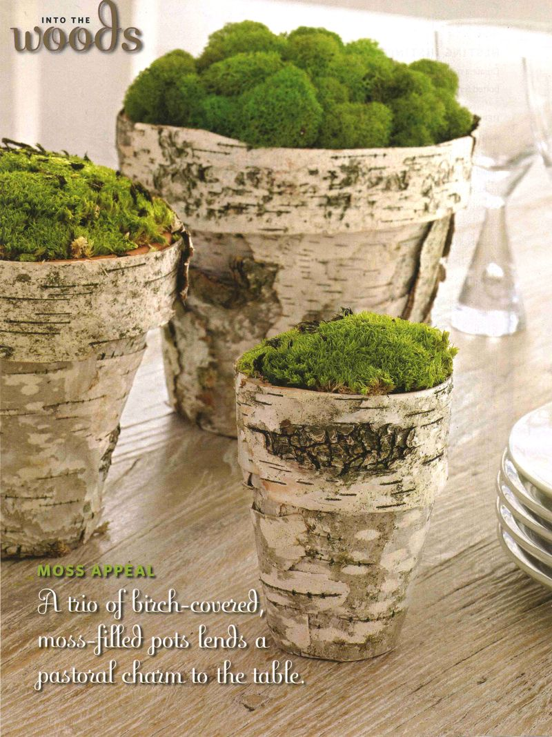 birch crafts for home decor - birch bark flower pots