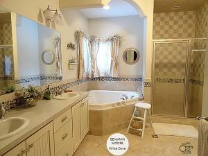 bathroom neutral paint