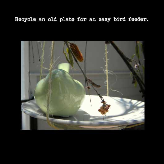 recycled plate bird feeder