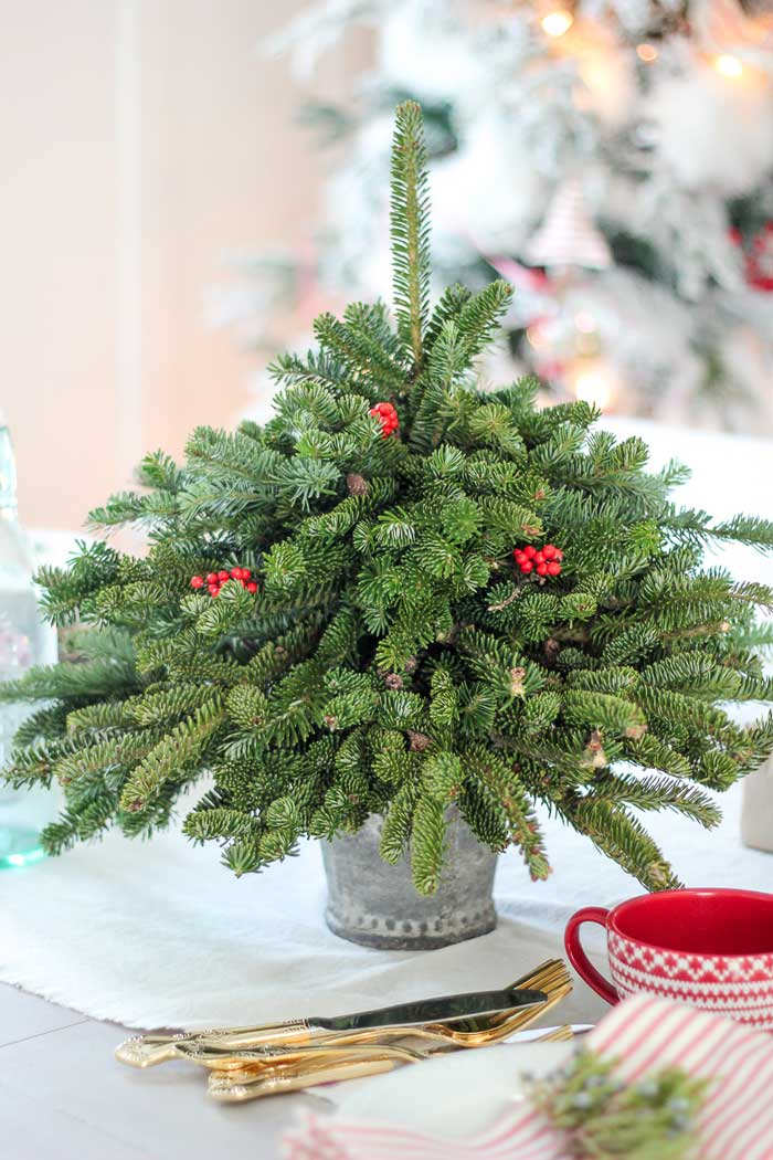 diy tabletop christmas tree with fresh pine clippings
