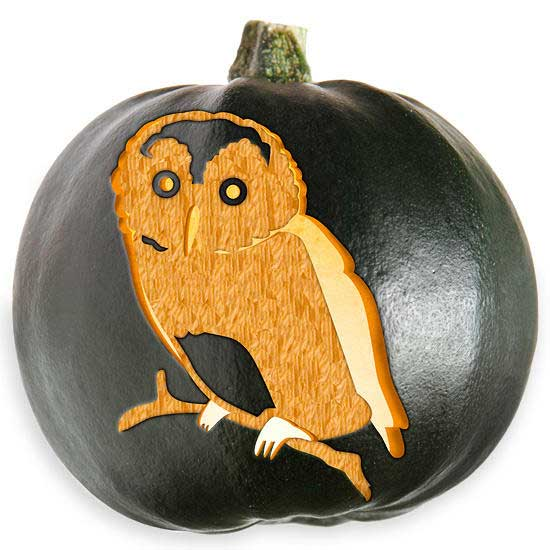 owl carved out in a pumpkin