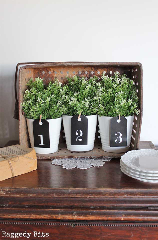 diy farmhouse plant display