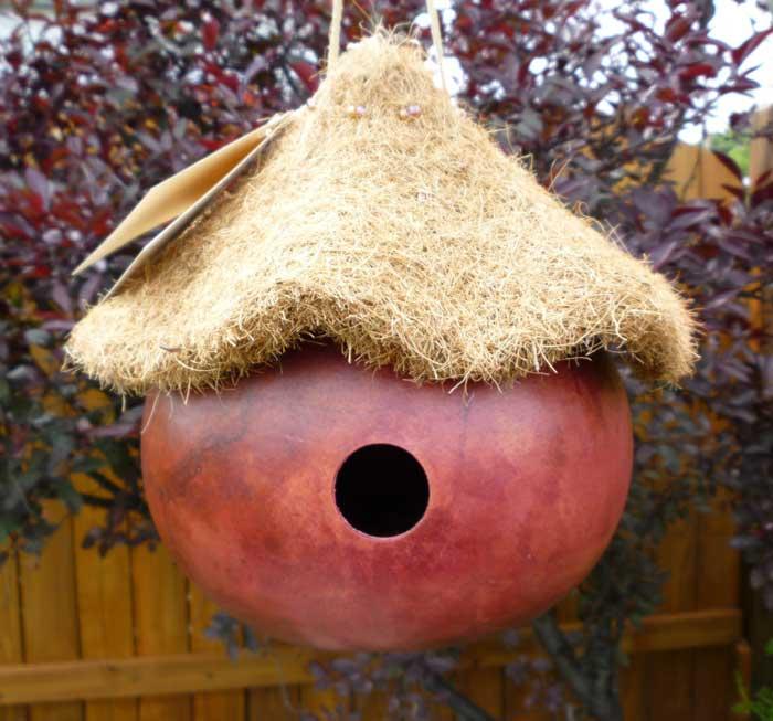 diy gourd birdhouse