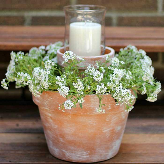 flower pot centerpiece