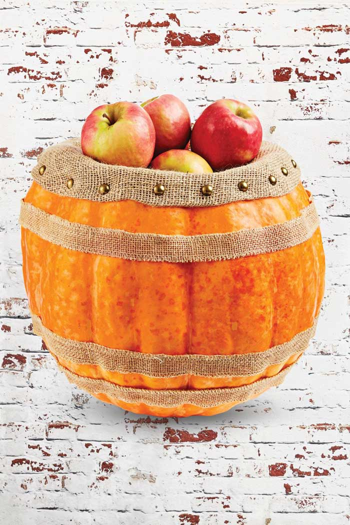 pumpkin barrel craft