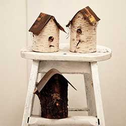 birch bird house craft