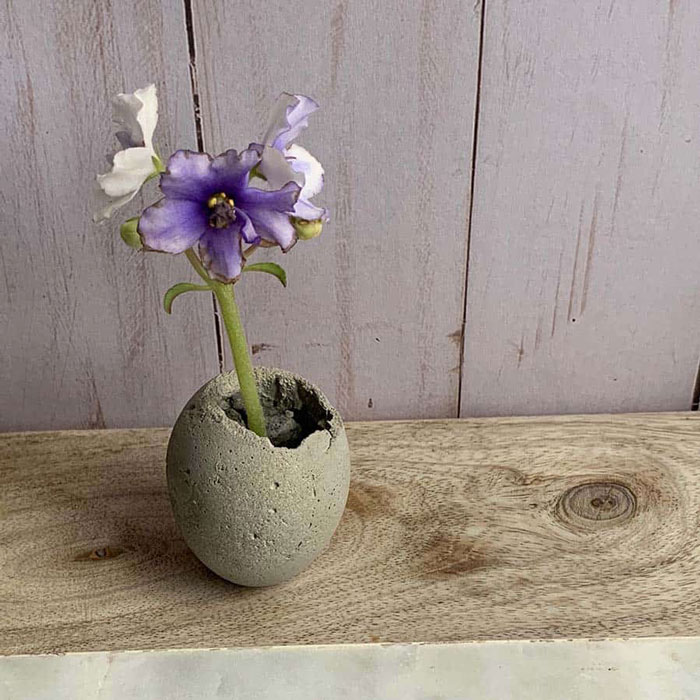 diy cement egg planter