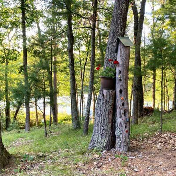 tree trunk bird house