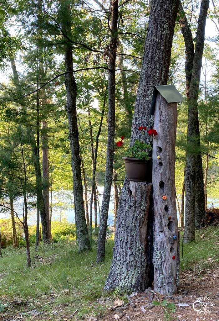 tree trunk bird house