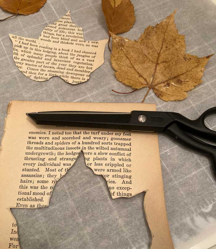 cut book page leaves