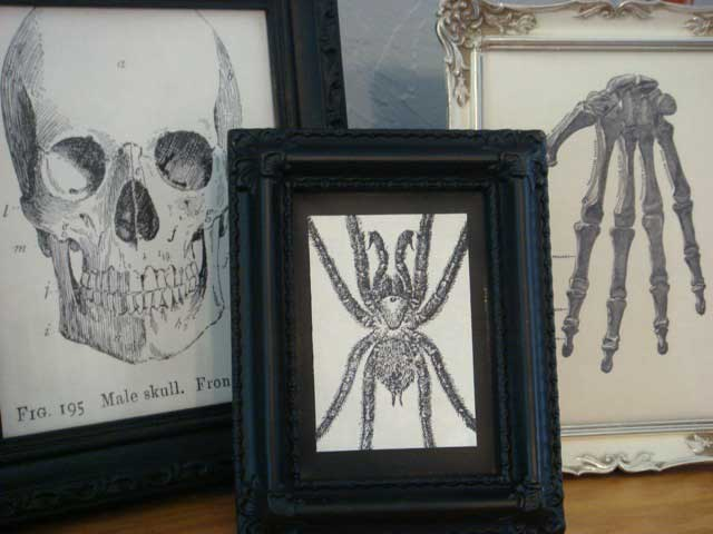 spooky framed decor