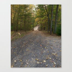 fall road canvas