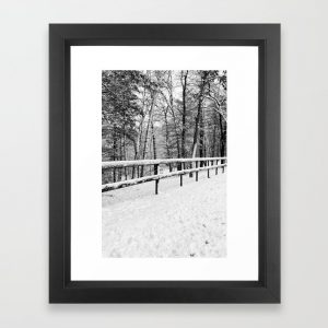 black and white winter fence