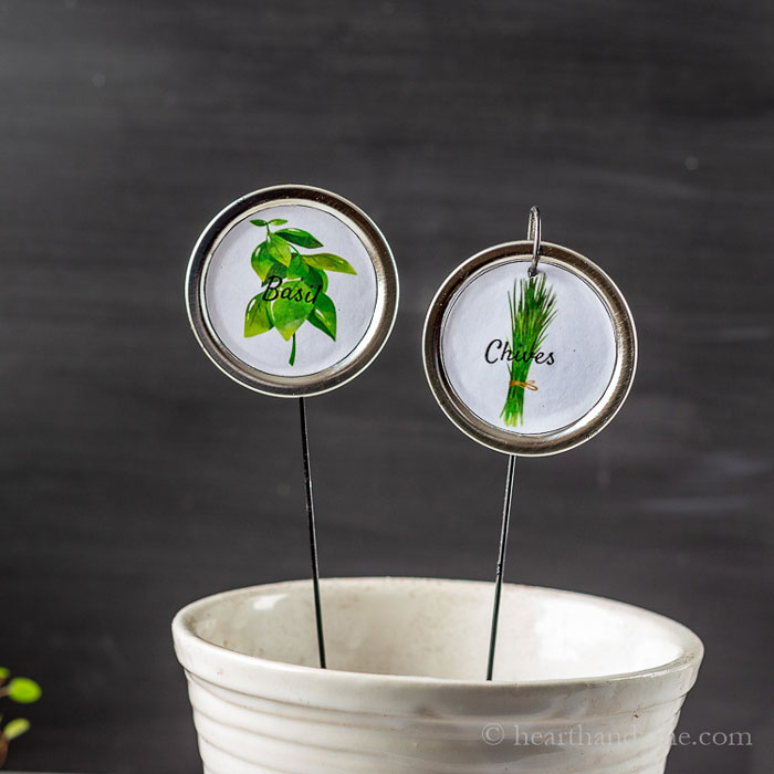 canning lid plant markers