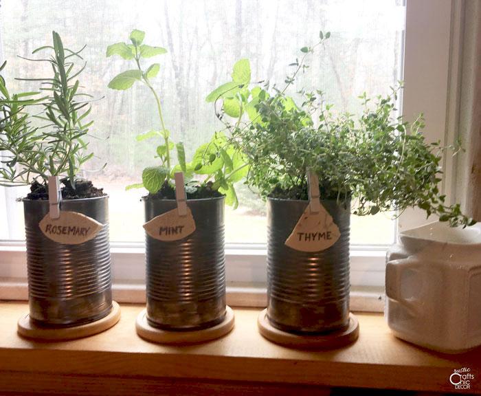 herb garden label clips