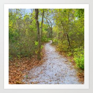 woodland path print