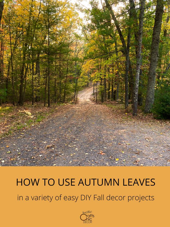 diy fall leaves decor