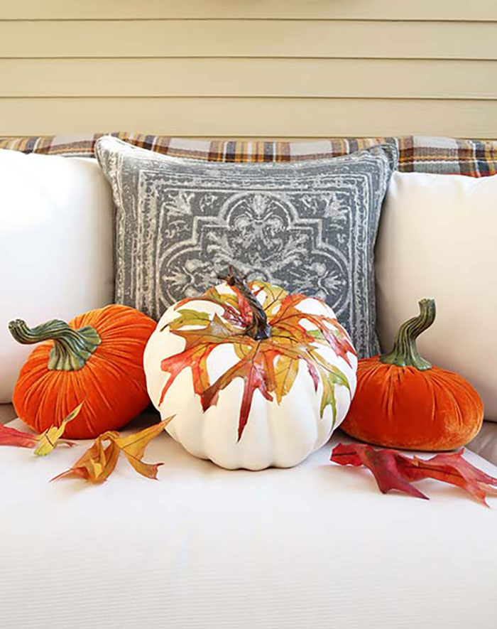 pumpkin with fall leaves