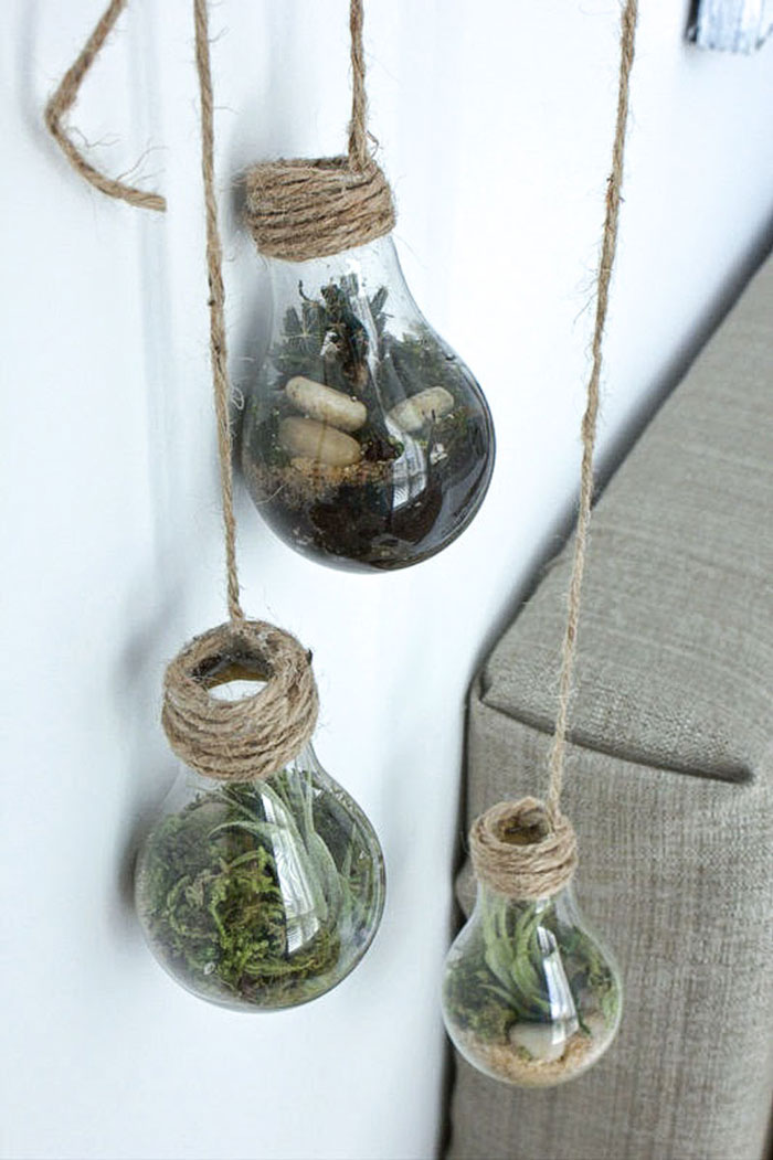 diy light bulb terranium craft