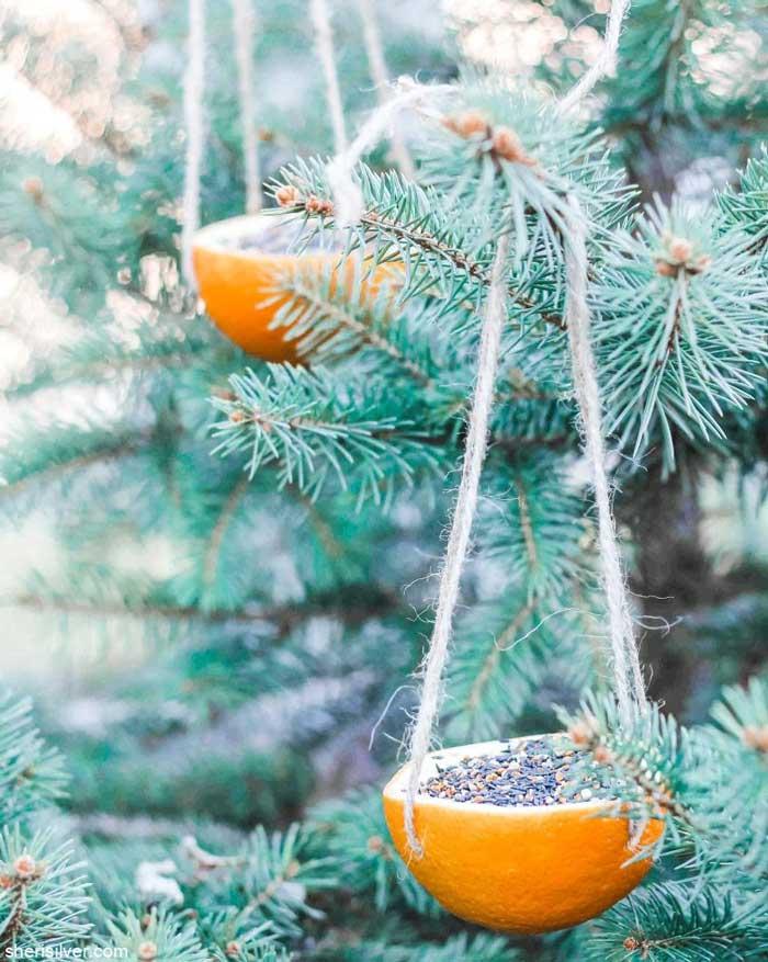 orange half bird feeder